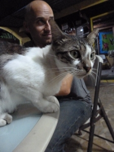 The resident cat. Of course we make furry friends wherever we go!