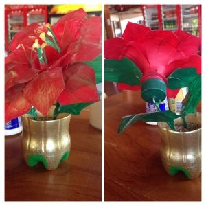 I LOVE this crafty pop bottle poinsettia that I found in a little town we stopped in en route to Santa Teresa.
