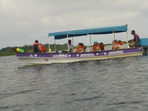 One of the many boats crowding the dolphins